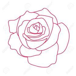 d roses dessin photo de fleur une pensee fleuriste