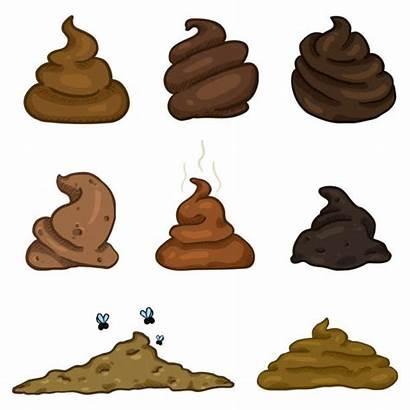 Poop Pile Manure Vector Cartoon Stool Pale