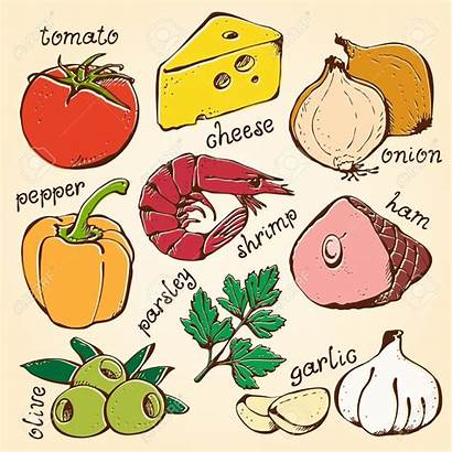 Pizza Ingredients Clipart Vector Vegetables Clip Topping