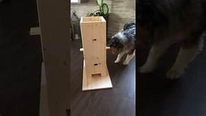 Hunde Intelligenzspielzeug Selber Machen : hundespielzeug selber machen ganz einfach mit bauanleitung youtube ~ A.2002-acura-tl-radio.info Haus und Dekorationen