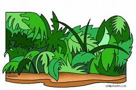 Jungle Clip Art For Ki...