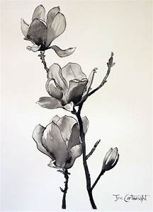 Love. Pen and ink drawing of Magnolias | Graphic Design ...