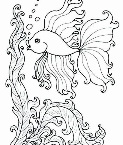 Coloring Sea Under Ocean Fish