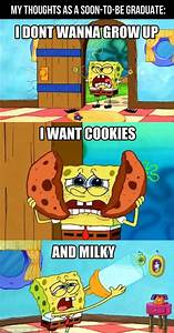 The gallery for --> Spongebob Pictures With Captions For Kids