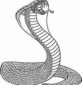 Snake Coloring Pages Printable Animal sketch template
