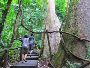 Piyamit Tunnel  Betong  Thailand  The Entrance