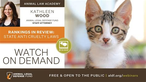 Rankings in Review: State Anti Cruelty Laws 2020 - Animal ...