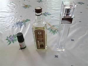 Parfum D Ambiance Maison : faire un parfum d 39 ambiance maison guide pratique ~ Teatrodelosmanantiales.com Idées de Décoration