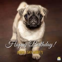 Funny Happy Birthday Cute Animals