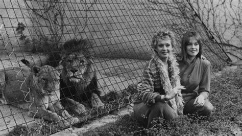 melanie griffiths wild childhood  lions entertainment tonight