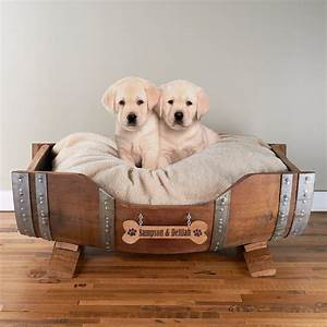 compare prices on plastic dog beds for large dogs online With plastic dog beds for large dogs