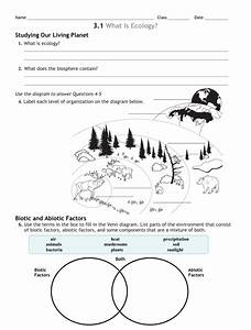 3 Review Worksheet