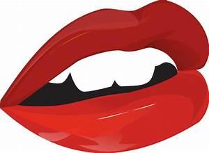 Mouth Lips Teeth Clip Art at Clker.com - vector clip art ...