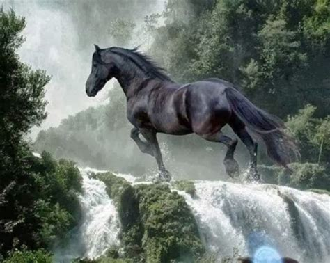 Waterfalls Wallpaper With Animals - black waterfall horses animals background