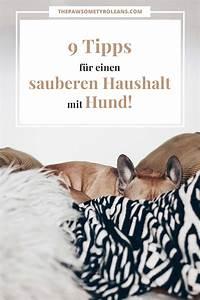 Tipps Für Den Haushalt : meine 9 tipps f r einen sauberen haushalt mit hund ~ Markanthonyermac.com Haus und Dekorationen