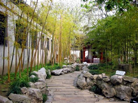 Garten Gestalten Bambus by Bambus Im Garten Faszinierend Und Vielseitig Einsetzbar