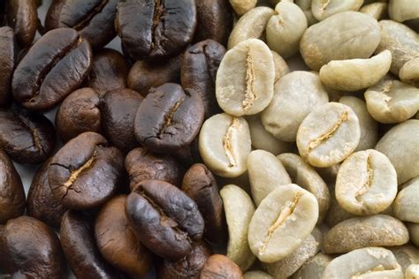 With the multitude of the best espresso brands displayed and advertised, it is getting increasingly complicated to pick the one that meets personal preferences. Best Coffee Bean Roasters on Amazon | The Best Organic ...