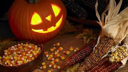 Halloween Funny Wallpapers Pumpkin