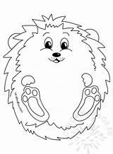 Hedgehog Autumn Coloring Animal sketch template