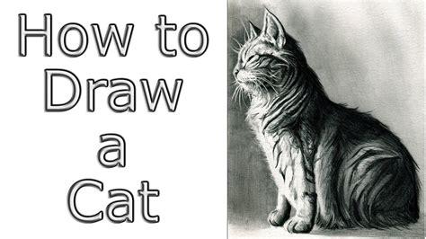 draw  cat youtube