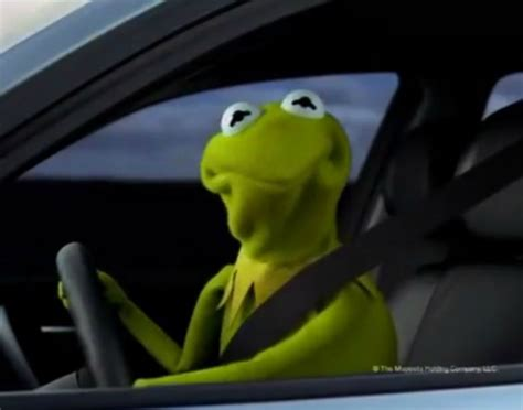 Kermit The Frog Meme Driving - nsfw the four types of drivers i loathe