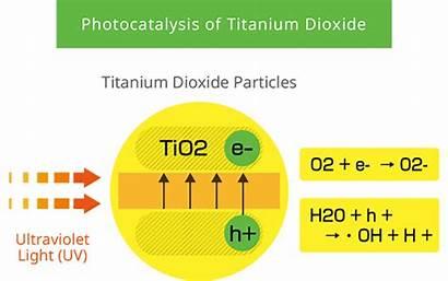 Photocatalyst Photocatalysis Tio2 Principle Biomimic Titanium Dioxide