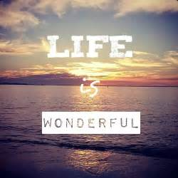 How Life Is Wonderful Quote