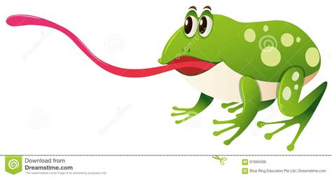 Frog Tongue Stock Illustrations