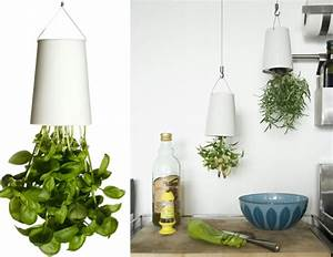 Boskke Sky Planter : upside down herb gardening with sky planters by boskke at home with kim vallee ~ Orissabook.com Haus und Dekorationen