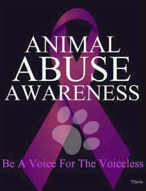 animal abuse awareness animals    pinterest