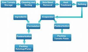 Sauce  Ketchup Powder Plant  U0026 Tomato Puree Powder Plant