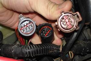 1993 Gt Mustang Harness Replacement With 1992 Mustang Gt