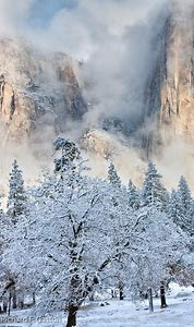 Winter Yosemite National Park California