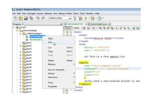 oracle sql developer no ocijdbc12 in java.library.path windows