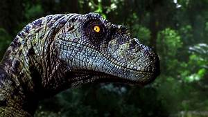 Top 10 Facts About Velociraptors You Didn't Know - YouTube  Velociraptor