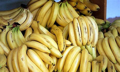 Veikalos Polijā banānu kastēs atrasts kokaīns - Ārvalstīs ...