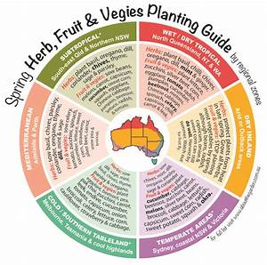 Spring Herb  Fruit  U0026 Vegies Planting Guide By Regional