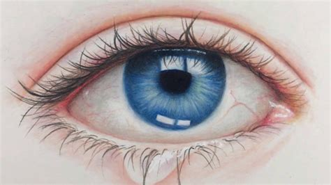 drawing realistic eye time lapse prismacolor pencils