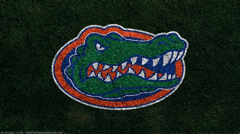 florida gators wallpapers  background pictures