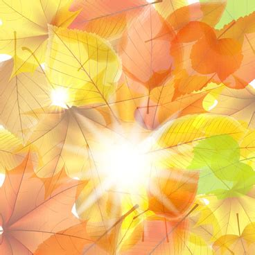 Free Clip Backgrounds by Vector Autumn Leaves Background Graphic Free Vector In