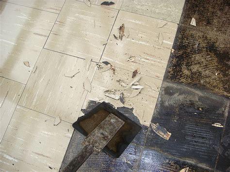 Removing Asbestos Floor Tiles by Asbestos Floor Tile Removal Flickr Photo