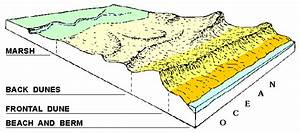 Maine Geological Survey  Coastal Sand Dune Systems