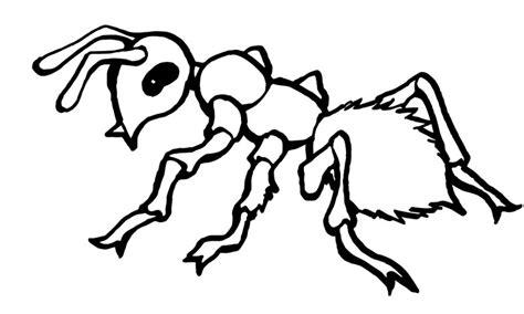 dibujos de hormigas  colorear  pintar