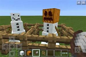 5 Things You Didnt know about the Snow Golem | Minecraft Amino