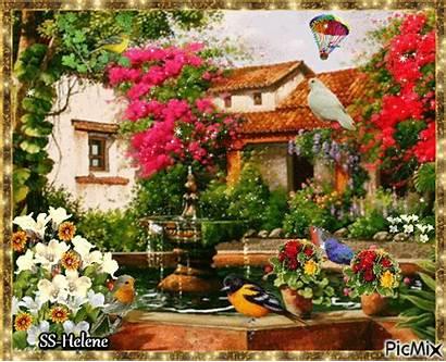 Garden Picmix Rose