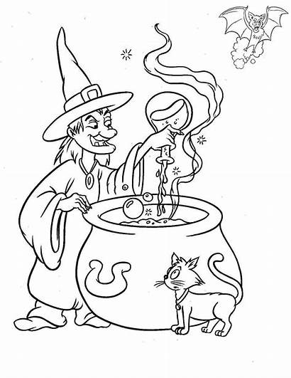 Coloring Cat Halloween Witch Pages Printable Adult
