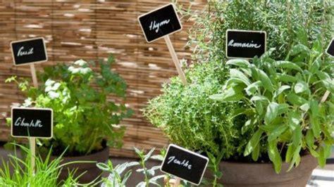 vaisselle cuisine comment planter des plantes aromatiques sur balcon