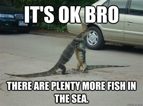 Fish In The Sea Meme - plenty of fish in the sea meme