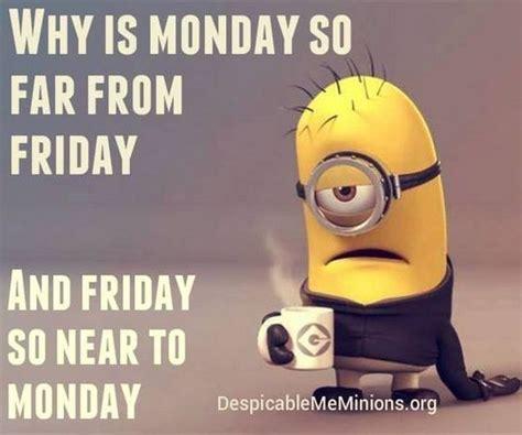 Monday Memes 43 Monday Meme That Make You Laugh Quotesbae