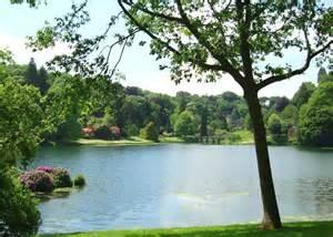 Peaceful Nature Scenes